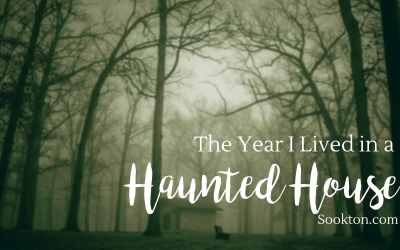 The Year I Lived in a Haunted House
