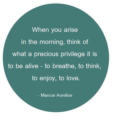 When-you-arise-in-the-morning-think-of-what-a-precious-privilege-it-is-to-be-alive-to-breathe-to-think-to-enjoyto-love