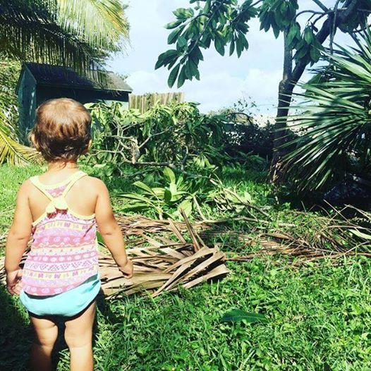 Hurricane Irma: Why I Stayed in Florida